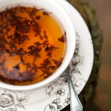 Herbatka z bzu na pocieszenie