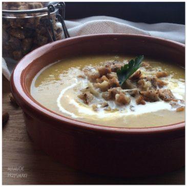 Porowa zupka włoska
